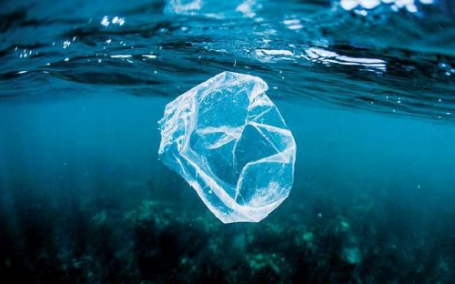Viet Nam and World Economic Forum Launch Partnership to Tackle Plastic Pollution